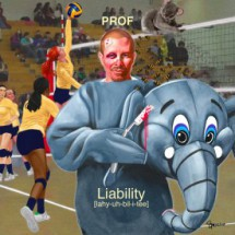 PROF-Liability-cover